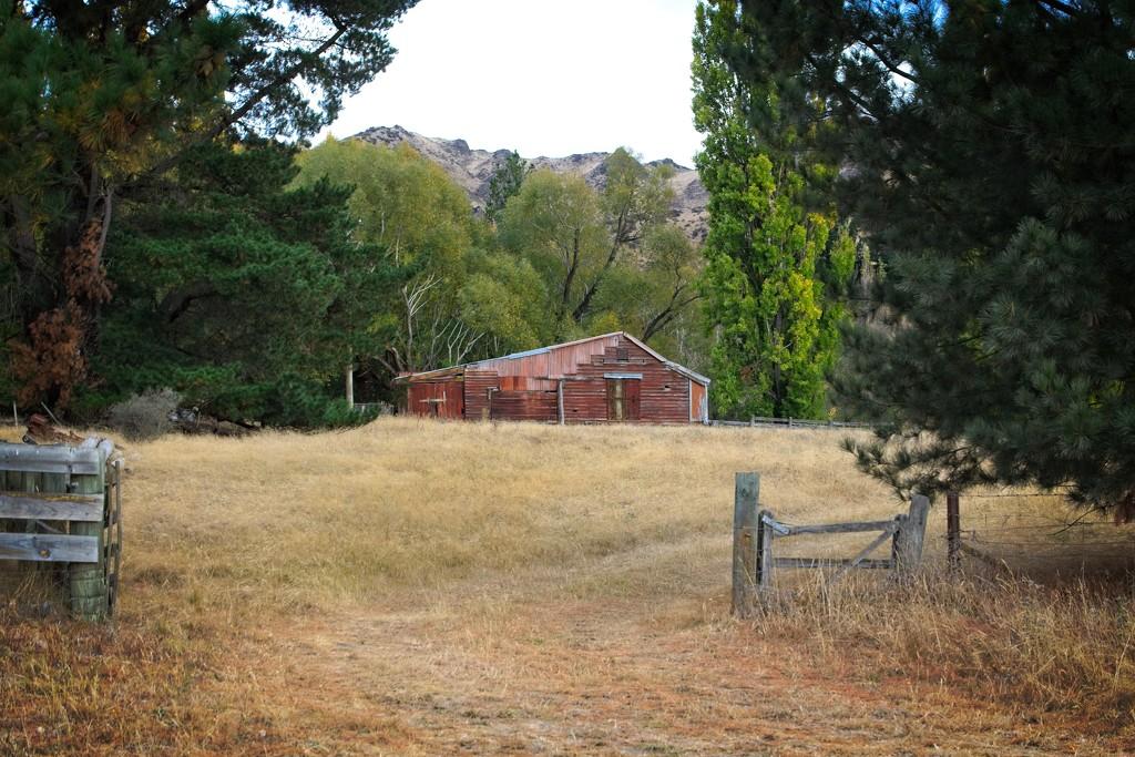 Hurunui Bluff barn by kiwinanna