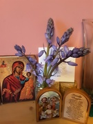 27th Apr 2021 - Some icons and a vase of Bluebells