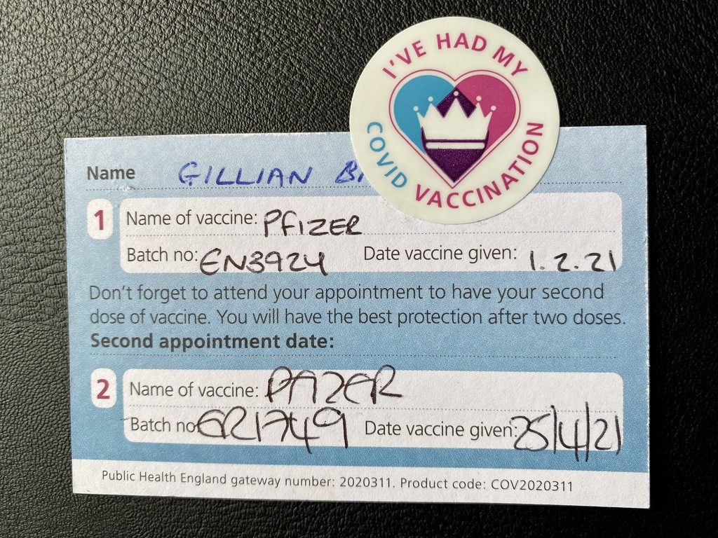 Second Jab by gillian1912