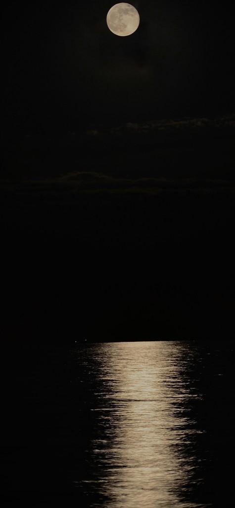 Full moon by wakelys