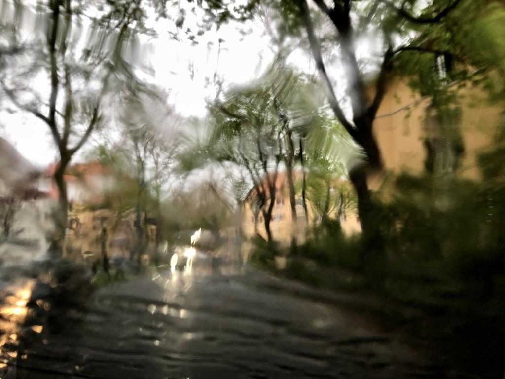 Rain by vincent24