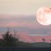 super-duper moon!