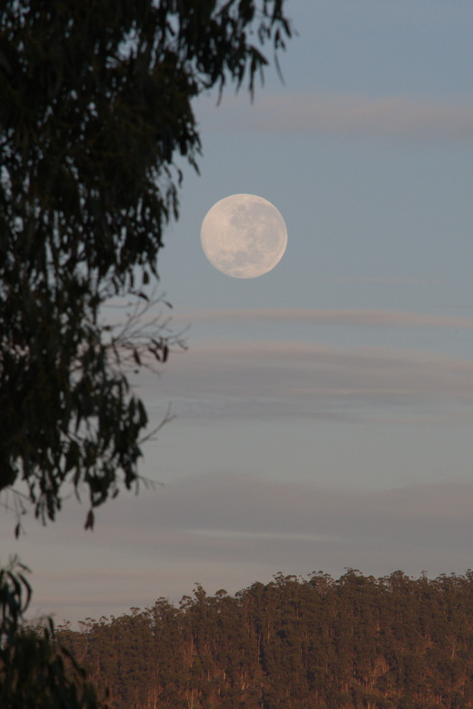 Super Full Moon by kgolab