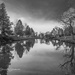 Black and white reflections by sschertenleib
