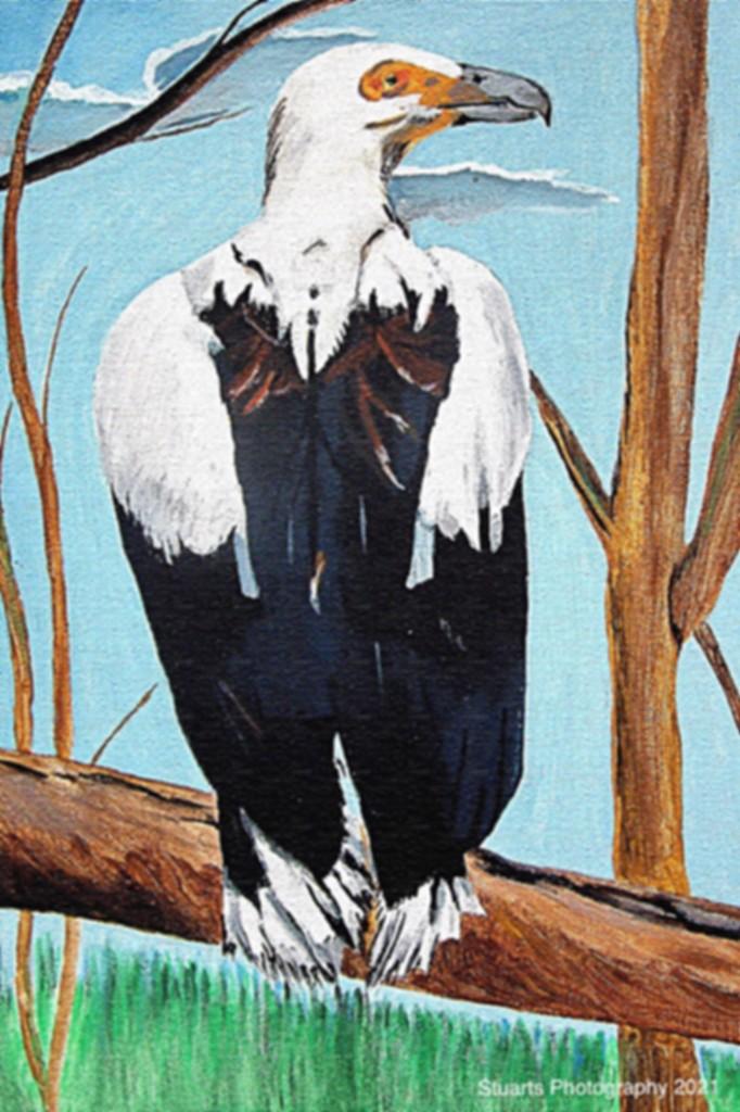 Vulture (painting) by stuart46