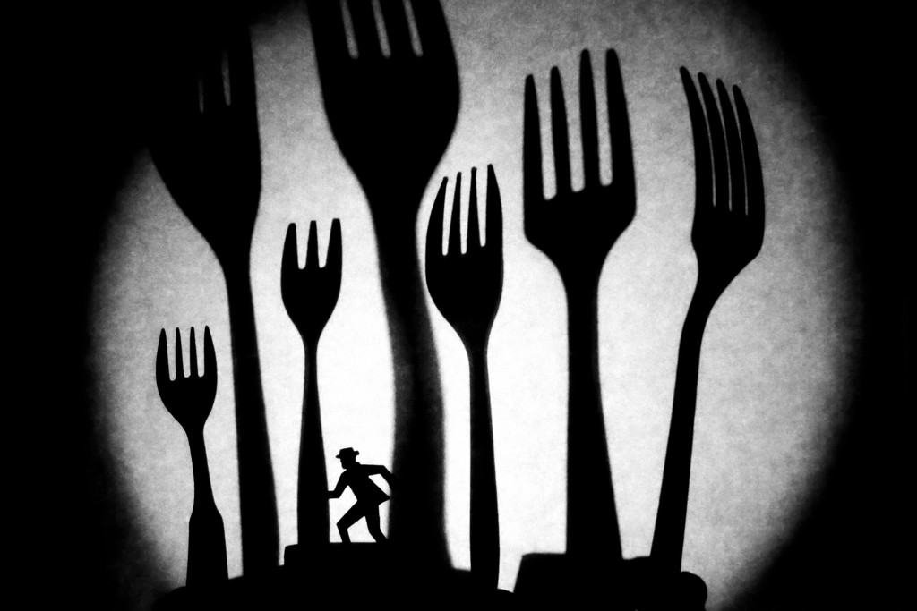 return to fork forest (redux) by northy