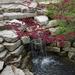 Water feature botanical garden