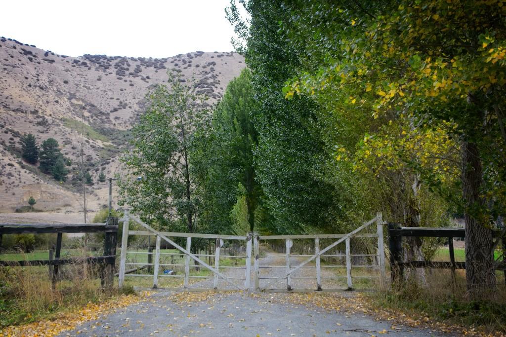 Old farm gates  by kiwinanna