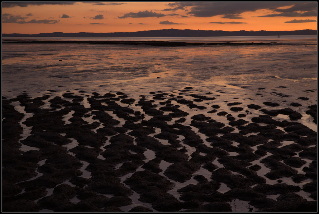The mudflats by dide