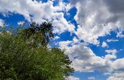30th Apr 2021 - Interesting Sky