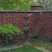 Interesting statue