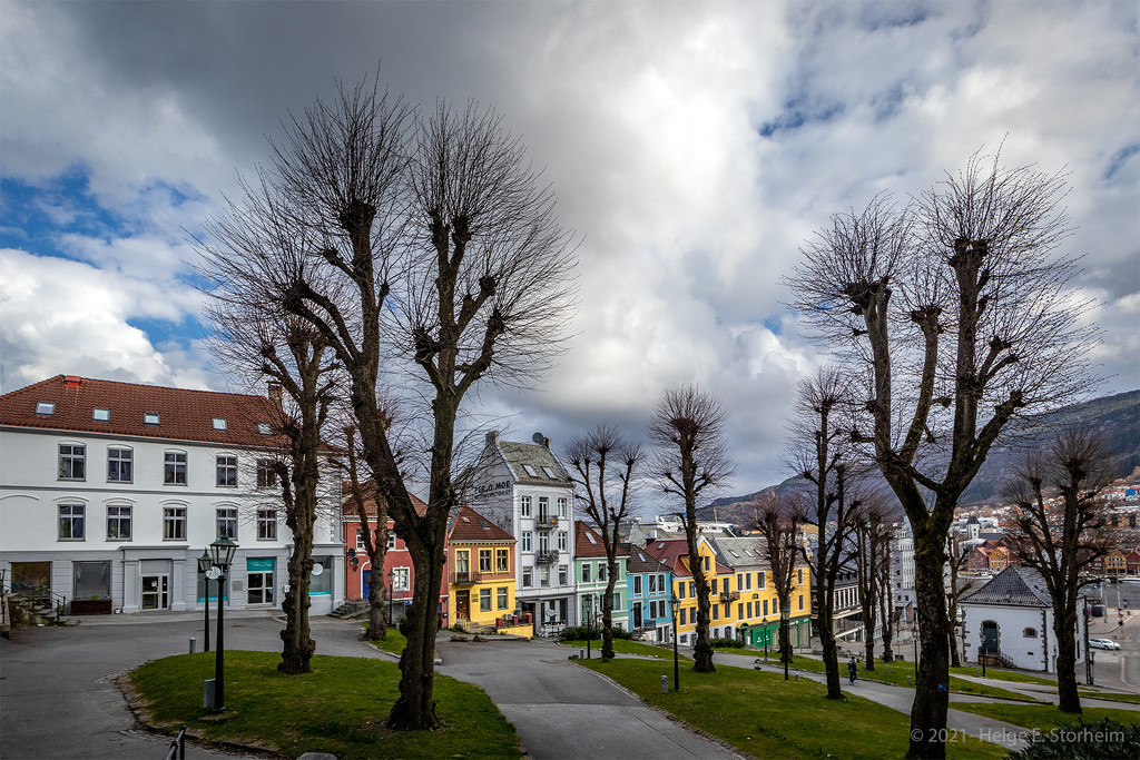 Linden trees and colourful houses by helstor365