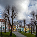 Linden trees and colourful houses