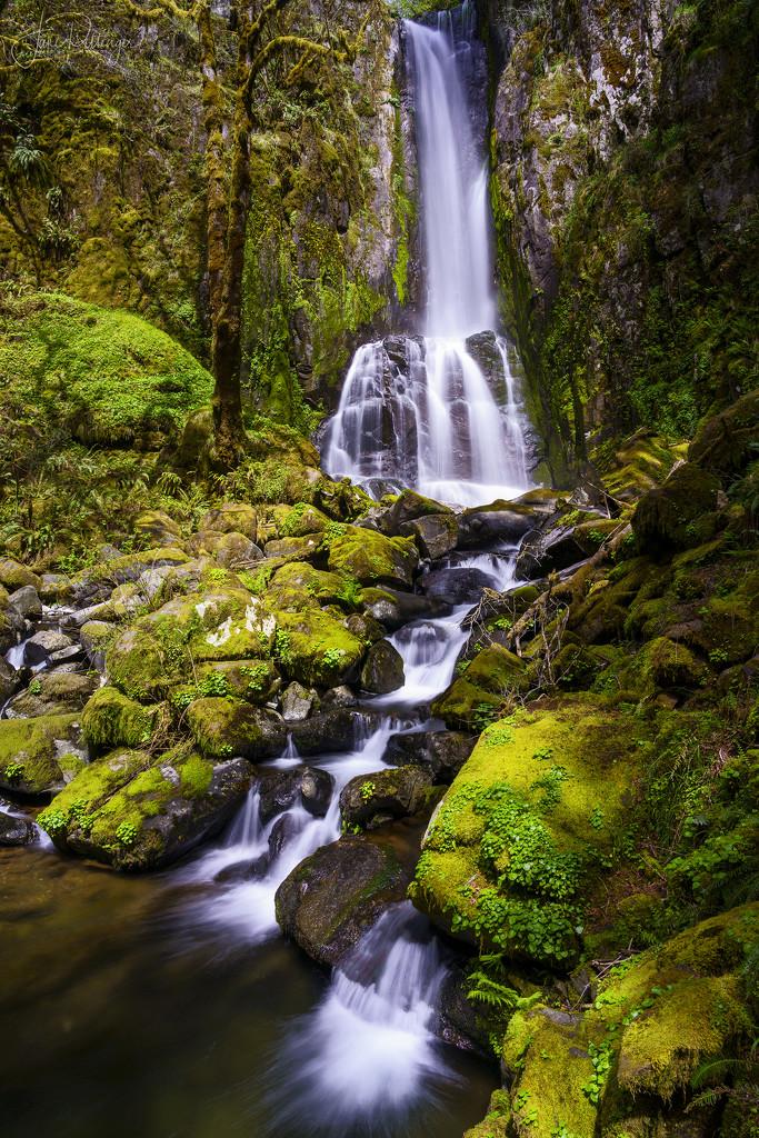 Kentucky Falls  by jgpittenger