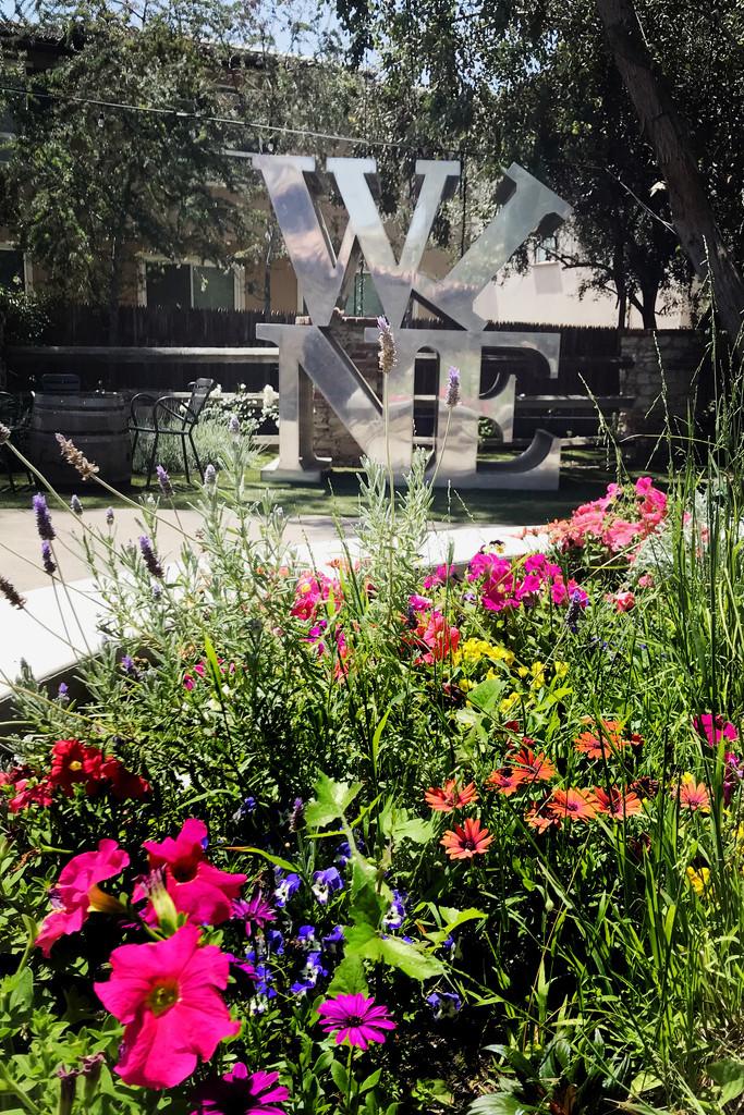 Malibu Wine Garden by jaybutterfield