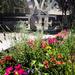 Malibu Wine Garden