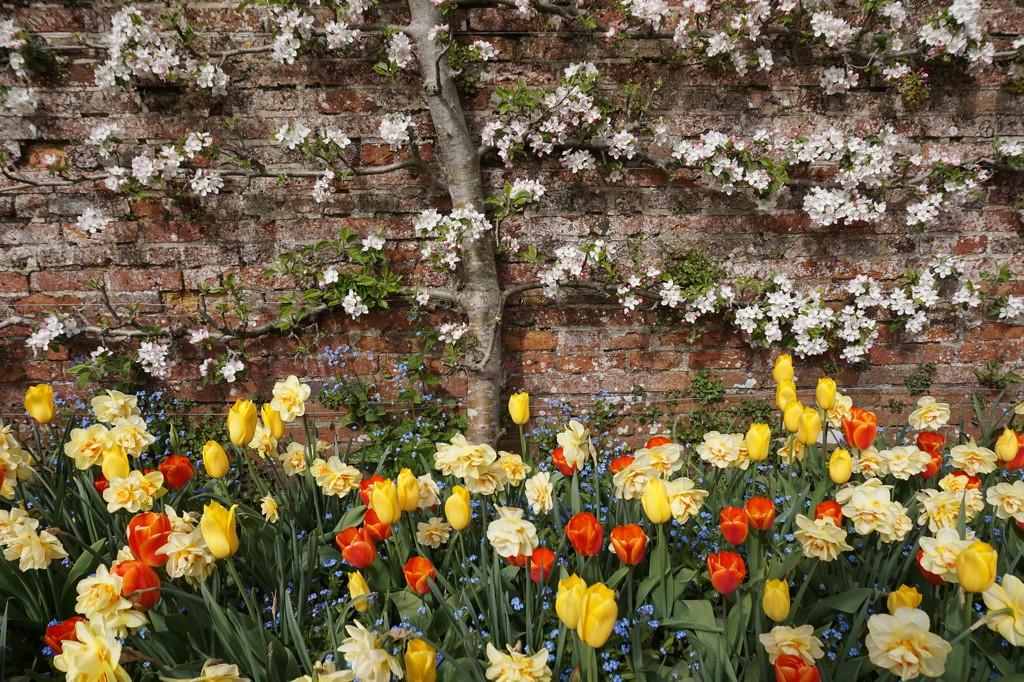 April 30th Hinton Ampner by valpetersen