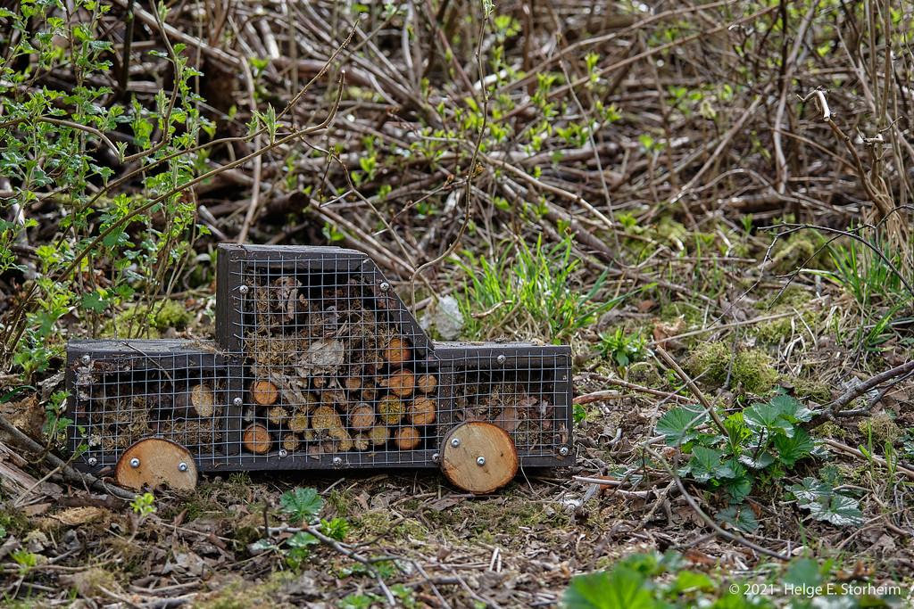 Cute insect hotel  by helstor365