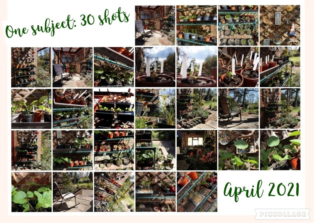 Collage for April 30 shots by valpetersen