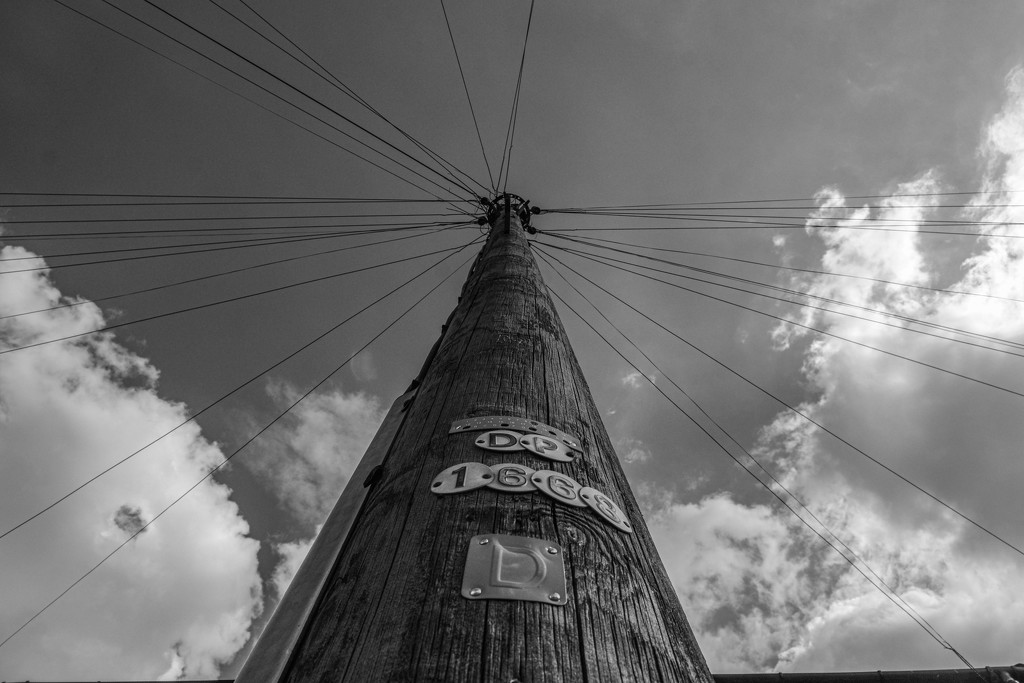 Land lines by 365nick