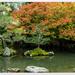 Japanese Garden...  Hamilton..