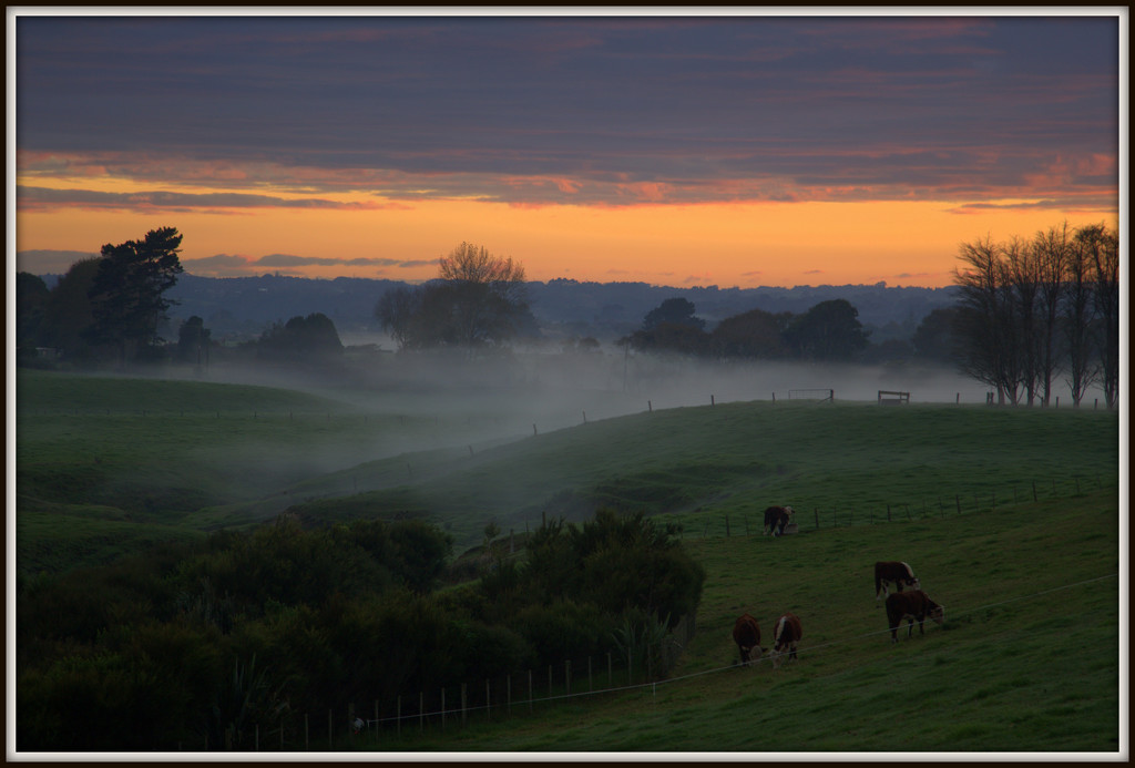 Autumnal morning by dide