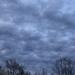 Y12 D123 Clouds