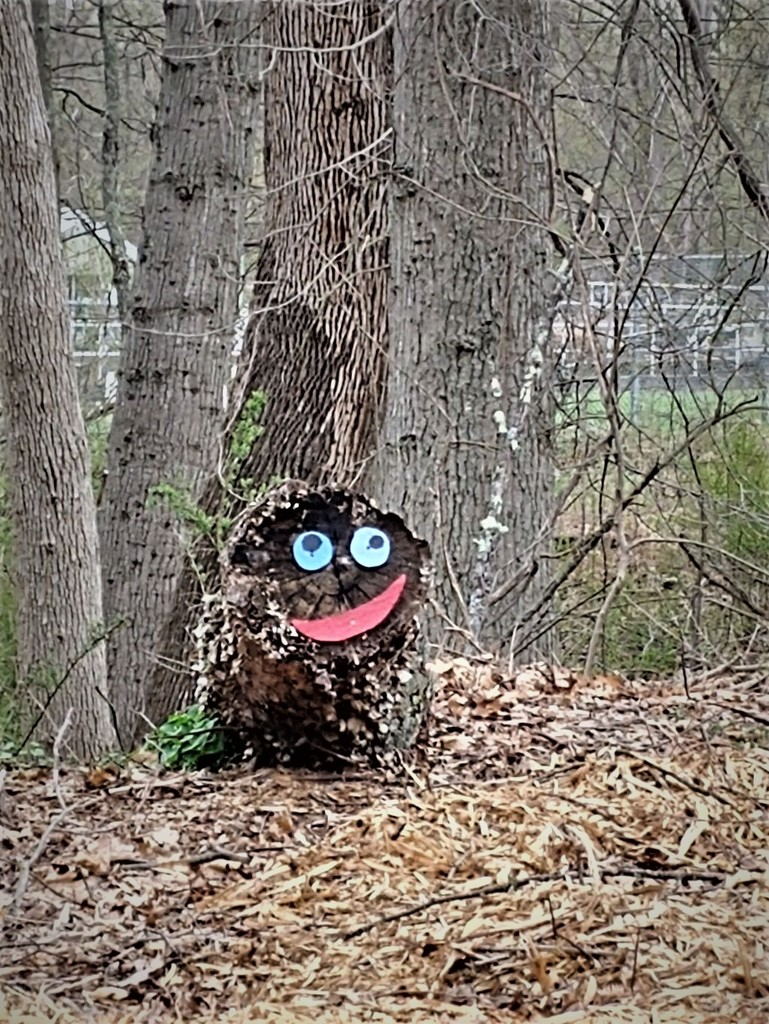 Face in the Woods by jo38