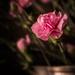 closer up-