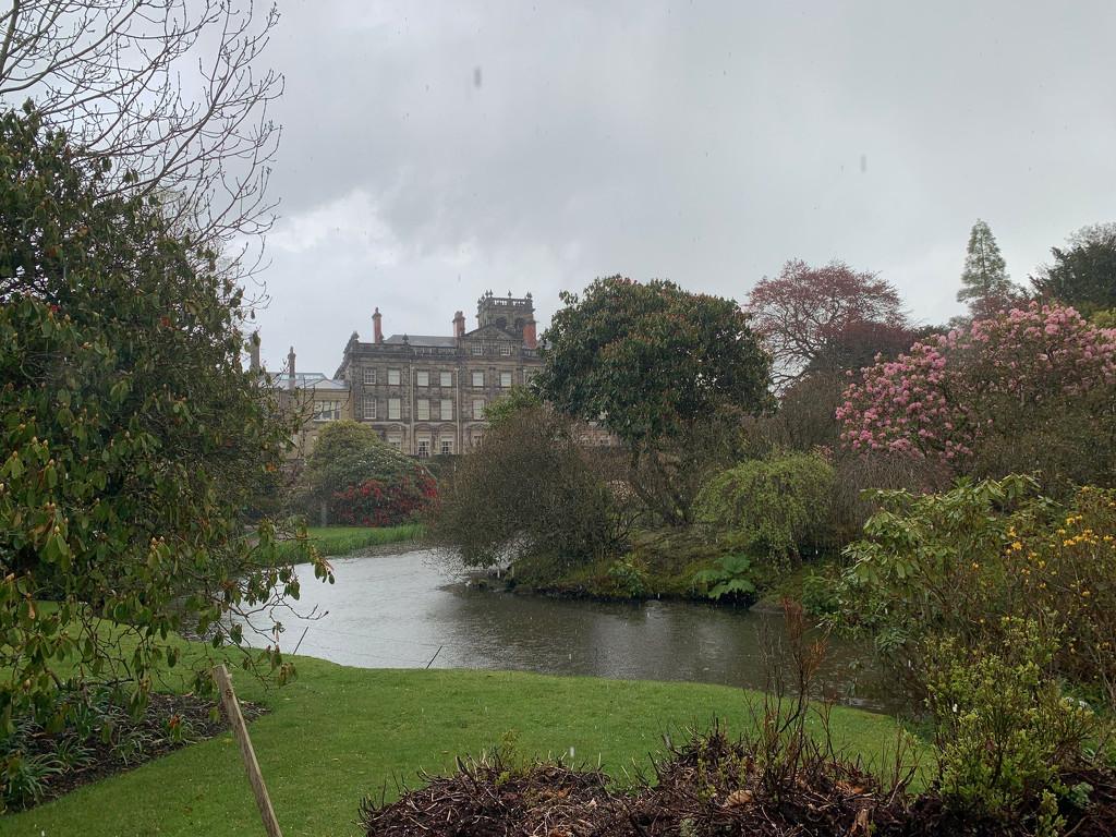 Biddulph Grange Gardens by 365projectmaxine