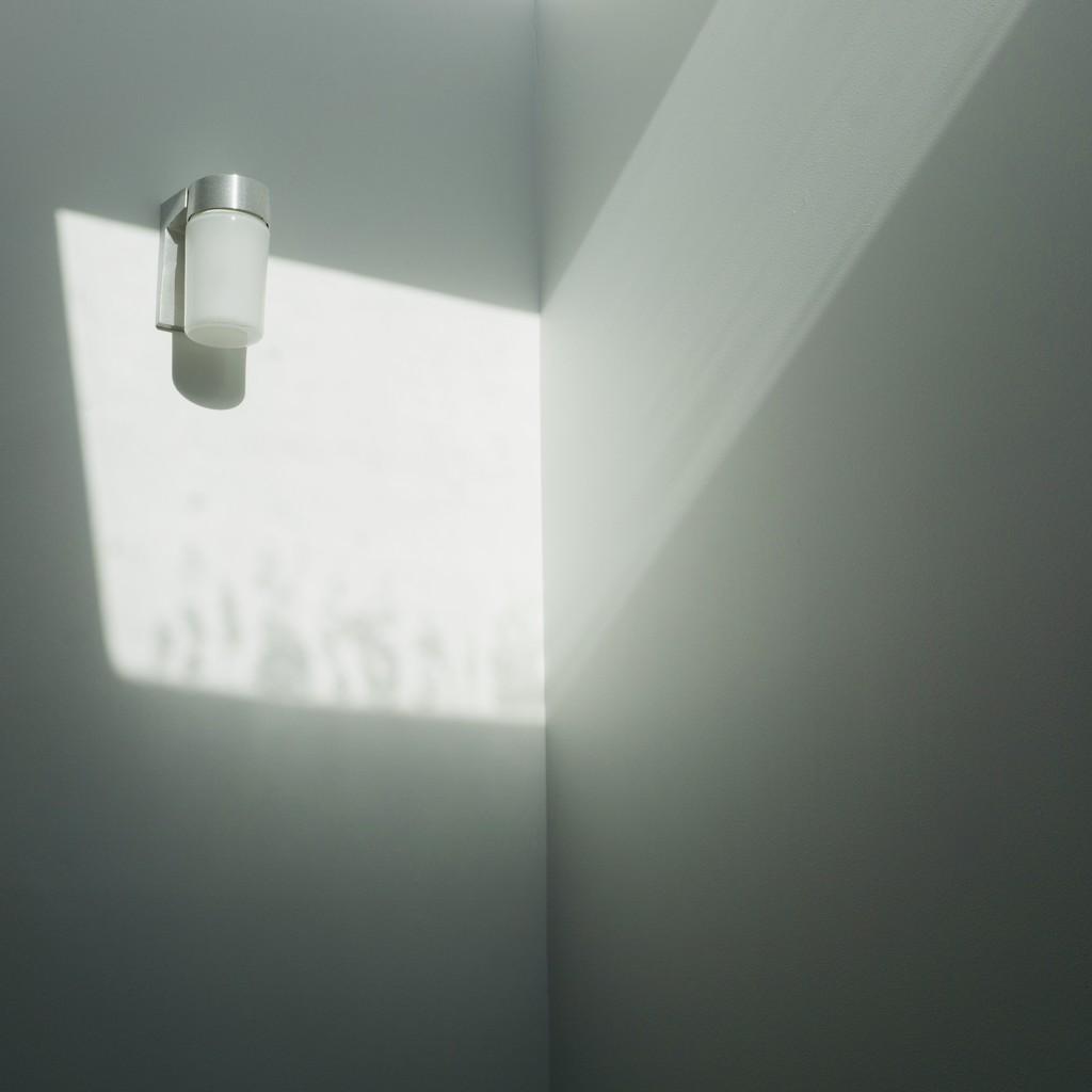 Sunbeam by cristinaledesma33