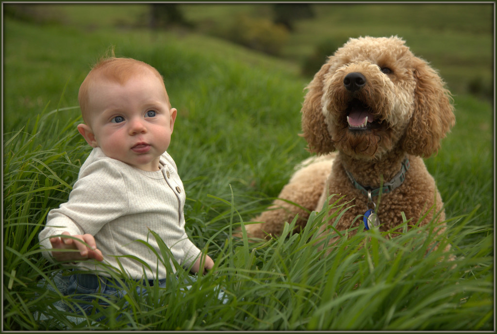 Just me and my dog by dide