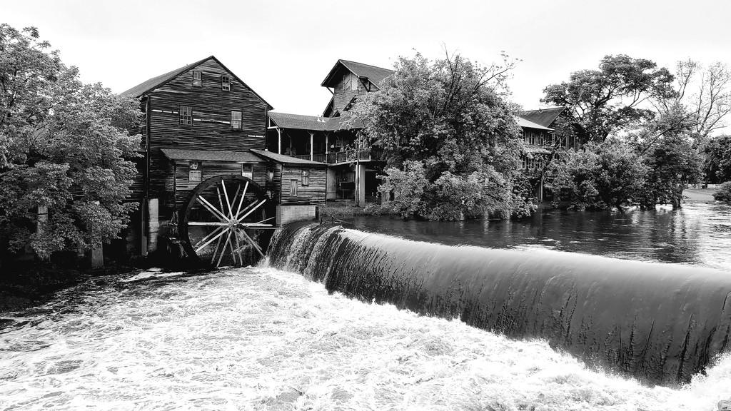Flowing Waters by photograndma
