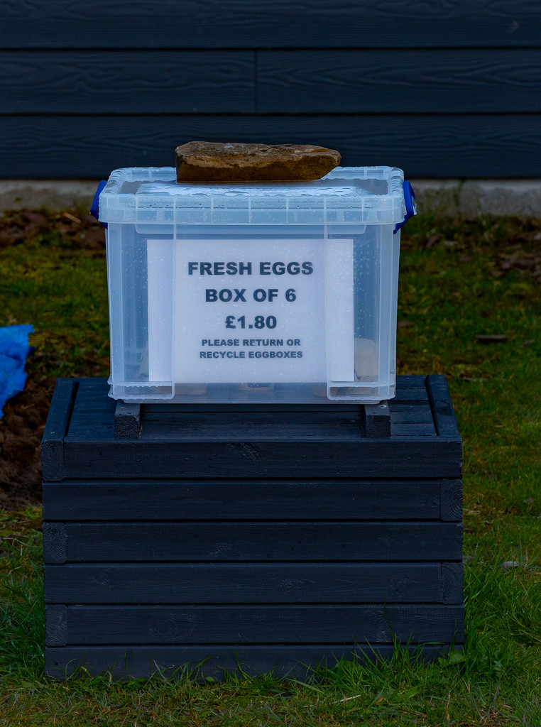 Honesty Box by lifeat60degrees