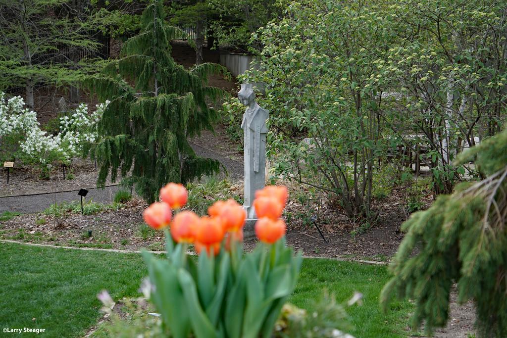Serenity garden by larrysphotos