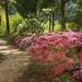 Hillsdale Gardens