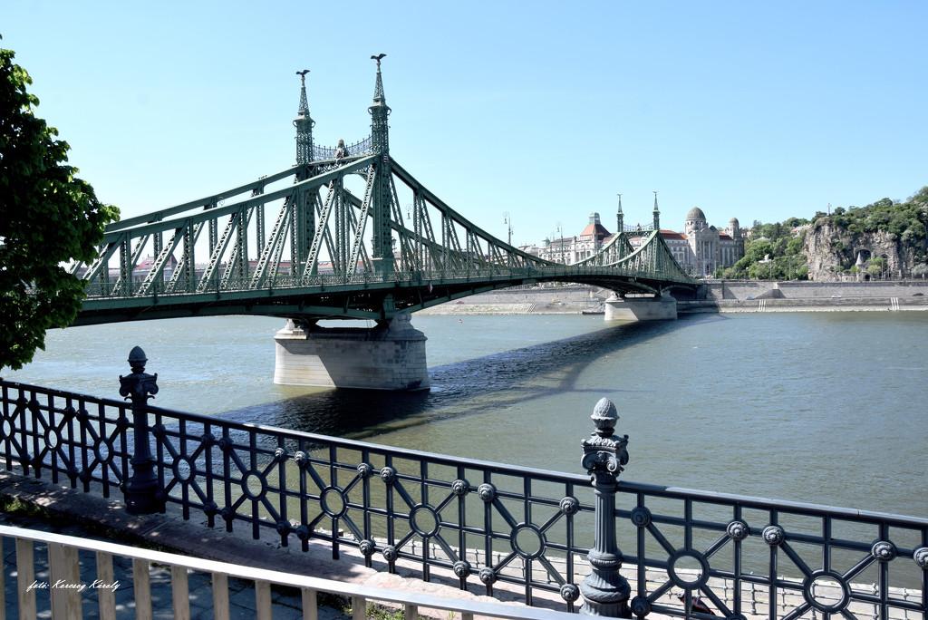 The Freedom Bridge by kork