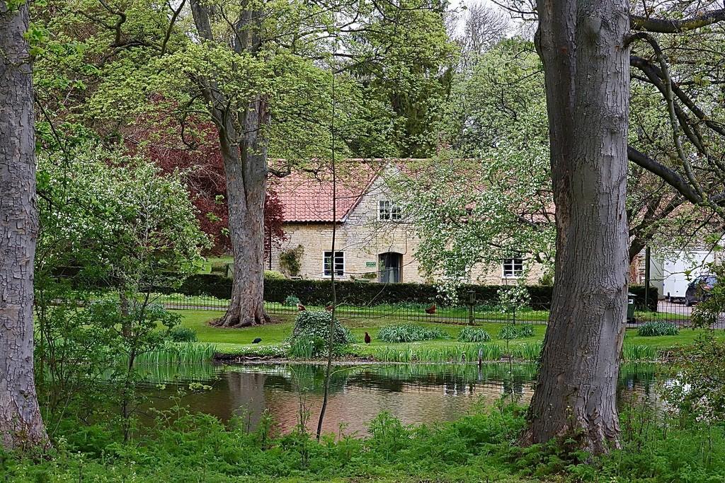 Estate House by carole_sandford