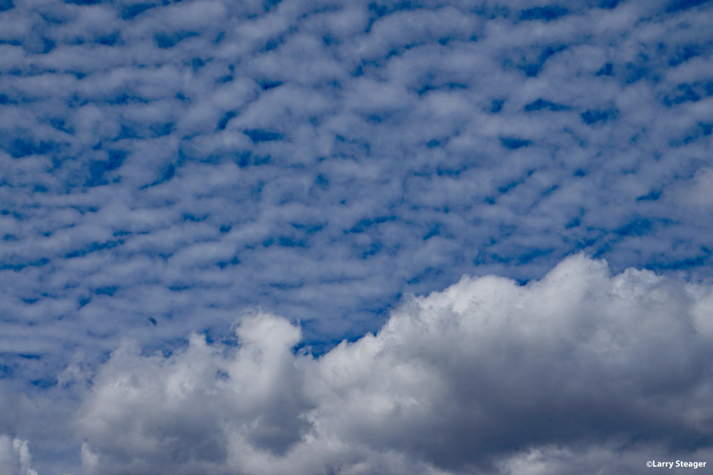Clouds in the sky not in my coffee by larrysphotos
