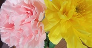 9th May 2021 - Mother's Day Flower