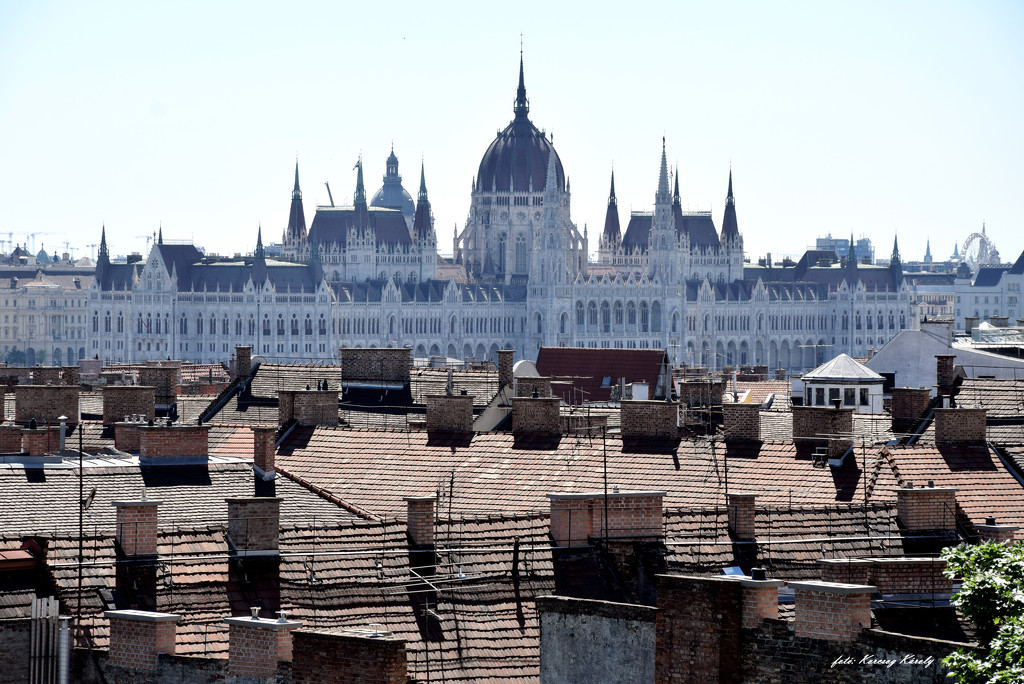 Buda rooftops! by kork