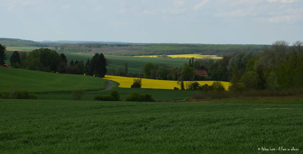 spring landscape by parisouailleurs