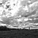 Cloudscape On The Prairie