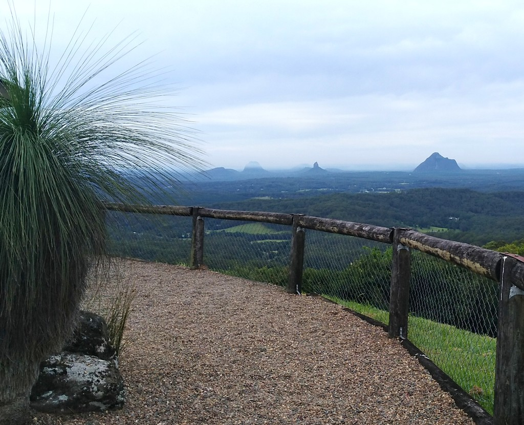 Last view of the Glass  House Mountains, just down the road from the last picture by 777margo