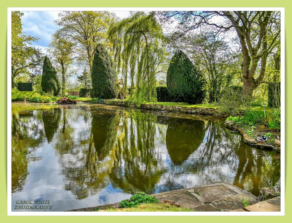 Lake And Reflections by carolmw