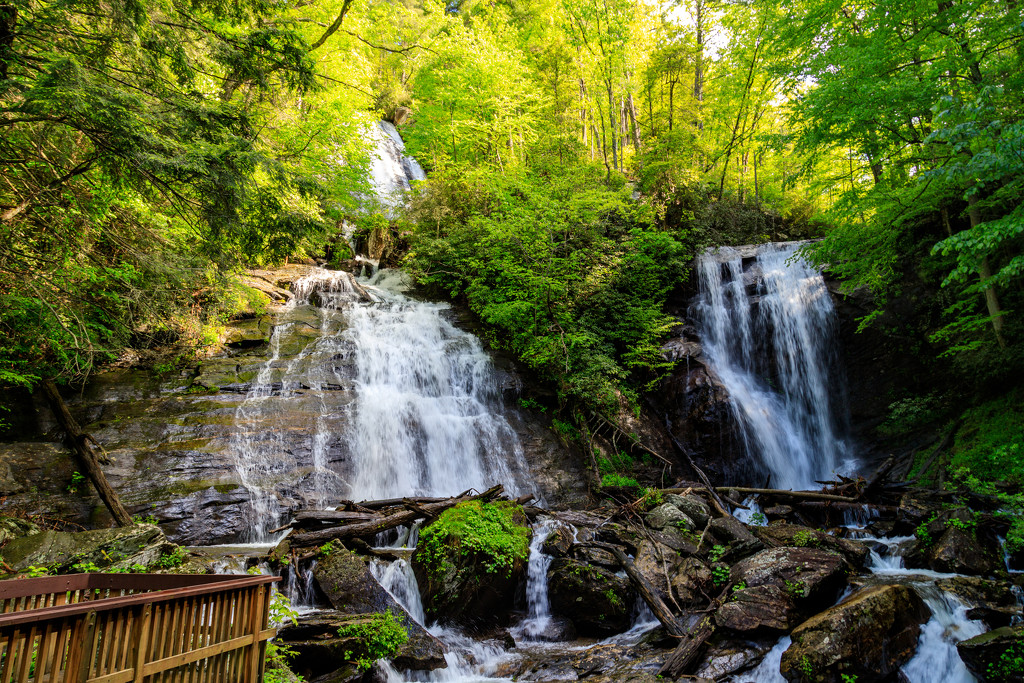 Anna Ruby Falls by hjbenson