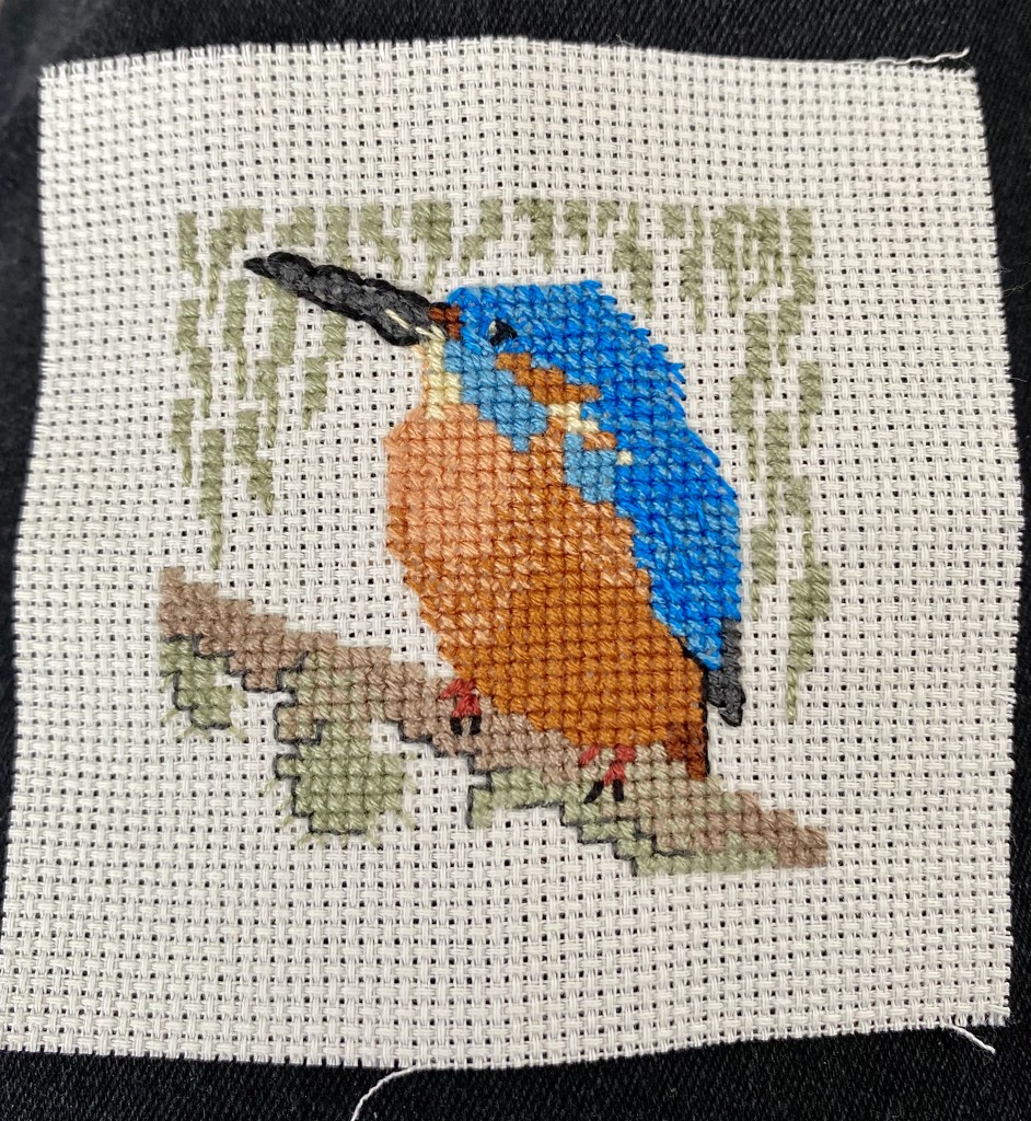 Kingfisher Cross Stitch by gillian1912