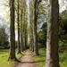 Lady Lucy's Walk - Wentworth Castle Gardens