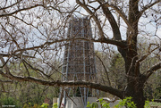11th May 2021 - New tower botanical gardens