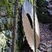 A Giant Sawblade